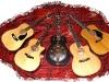 meine-gitarren.jpg
